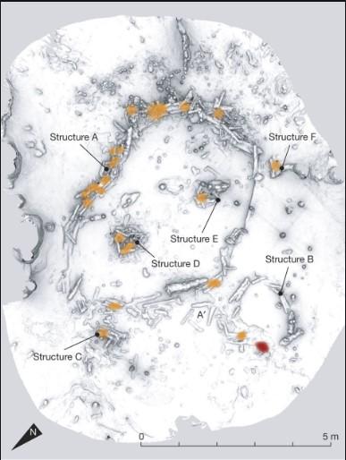 neandertalluolataide_2019-11-11.jpg
